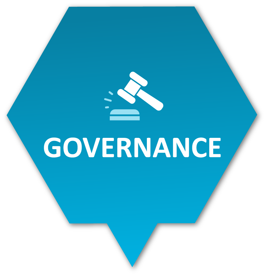 Governance Icon